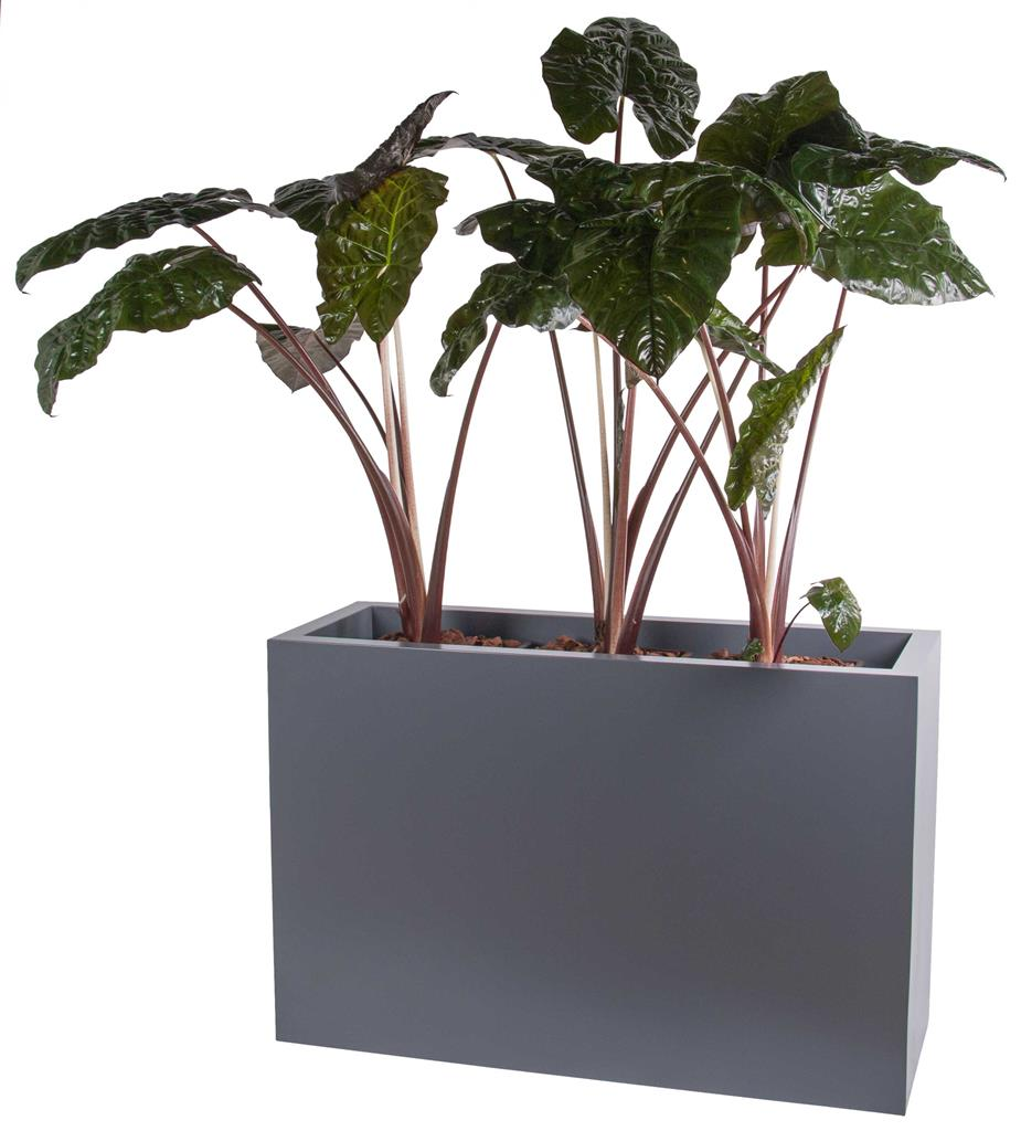 Vase The World: Chicago Matte Grey
